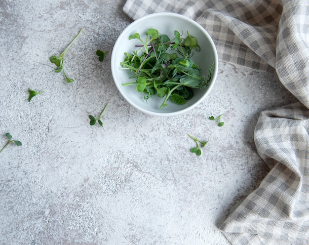 Assortment of micro greens on concrete background. healthy lifestyle