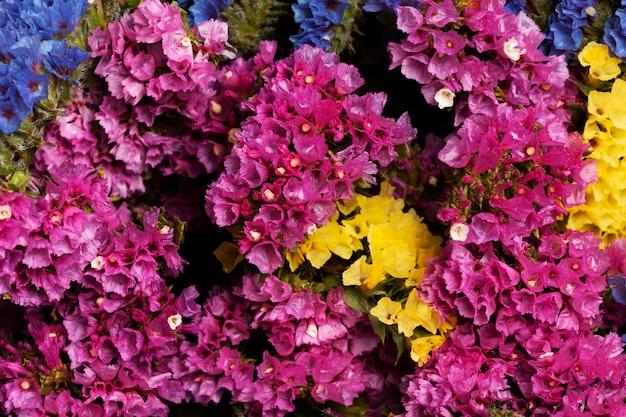 美しい花の背景の品揃え