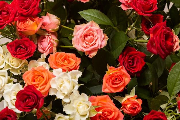 Ассортимент красивых цветов фона