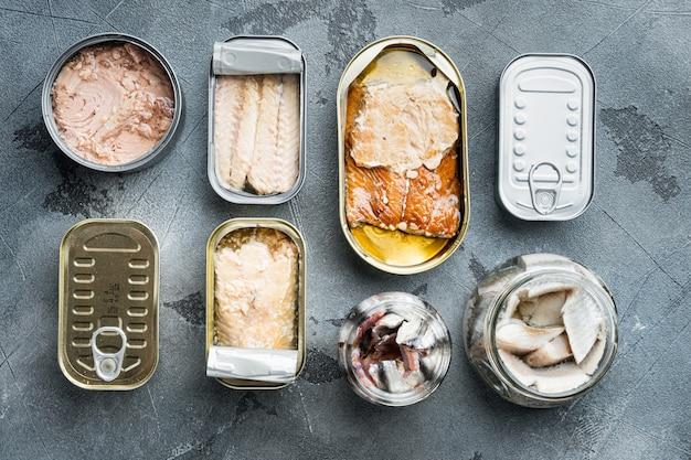 Ассортимент банок консервов с разными видами рыбы, на сером, плоский вид сверху