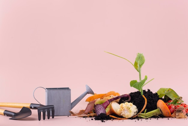 Ассортимент компоста из гнилых продуктов с копией пространства