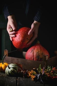 異なるカボチャと果実の詰め合わせ