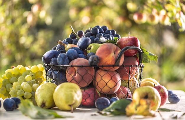 철사 바구니에 정원 테이블에 신선한 과일의 구색.
