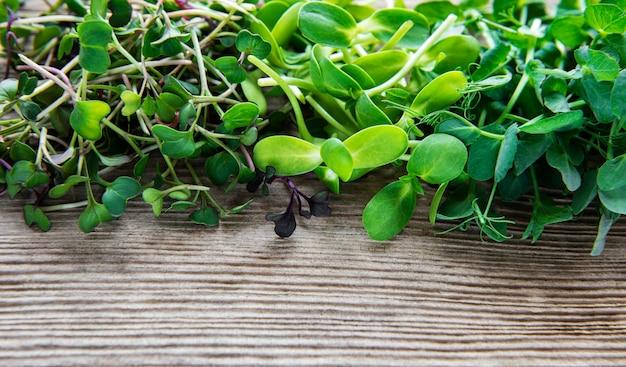 Ассортимент микро зелени на старый деревянный стол, вид сверху.