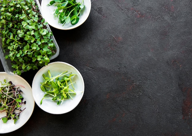 Ассортимент микро зелени на черном каменном фоне, копия пространства, вид сверху. красный редис, зеленый горошек, подсолнечник и другие ростки в мисках. здоровый образ жизни
