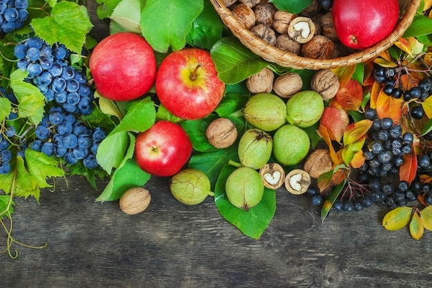 Assortment organic fruits berries apple grape damascene walnut rowanberry dark wooden country background health care natural concept top view