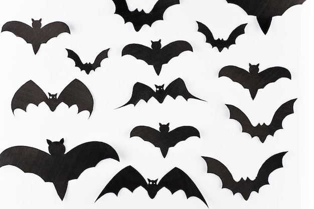 Assortment of paper bats decoration