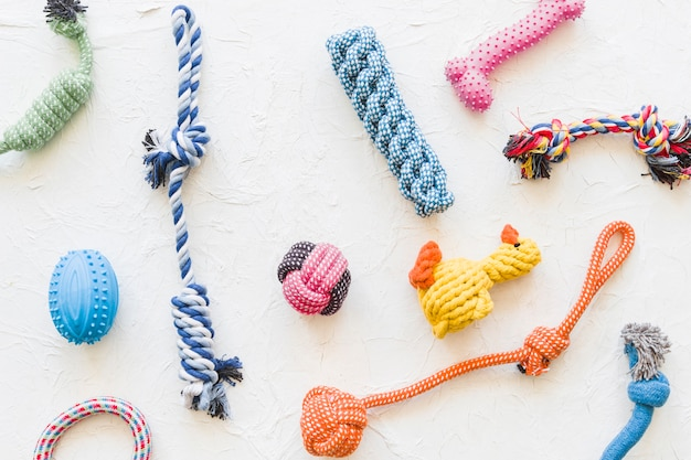 Assortment of pet toys