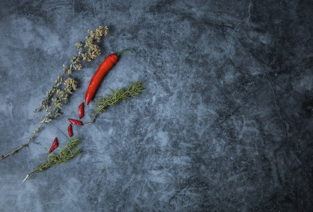 An assortment of red chilli pepper with thyme and rosemary with copyspace