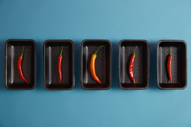 Assortment of red and one orange chili pepper, packed on black trays in market, isolated over blue background, can be added as spices to your dish. heat product. seasoning and cooking concept