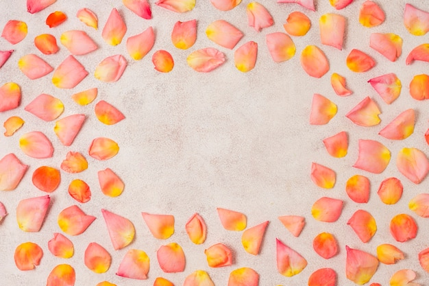 Assortment of rose petals with copy space