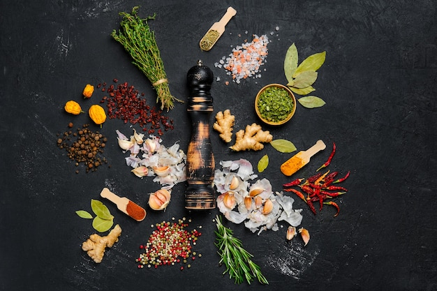 Assortment of spice and seasonings scattered on dark background