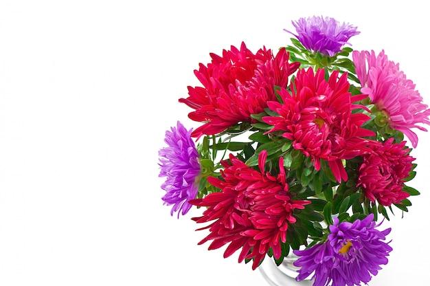 Aster fiori in un vaso di vetro