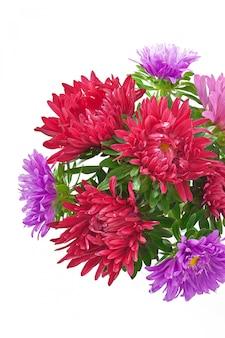 ガラス花瓶のアスターの花