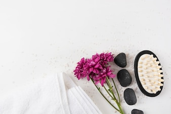 Aster flowers; towel; spa stone and massage brush on salt over white background