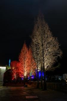 Ночью деревья украшены огнями, чтобы выглядеть как праздники.