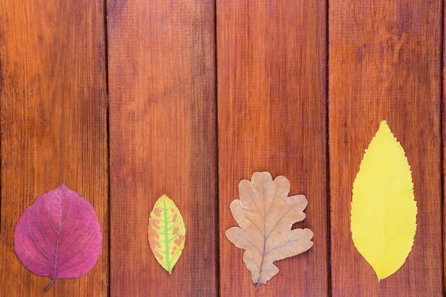 Внизу кадра - 4 разноцветных осенних листа на коричневом деревянном фоне.