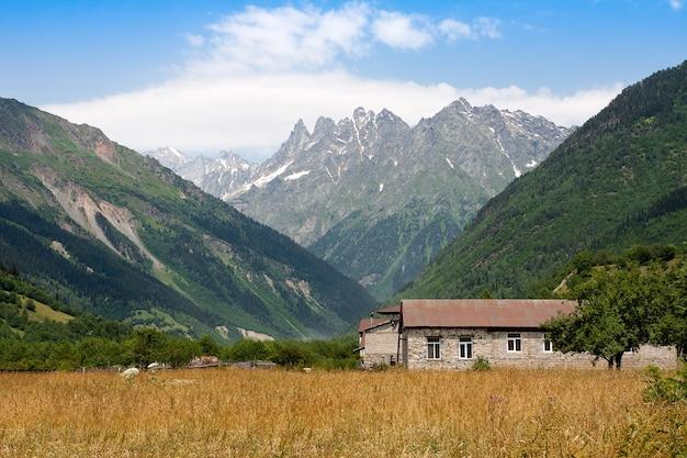 ジョージア州スヴァネティの黄色い植物のある平屋建ての建物と畑のふもとの山。コピースペースのある画像。