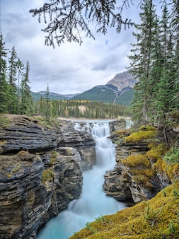 Athabasca falls is a waterfall in jasper national park alberta canada