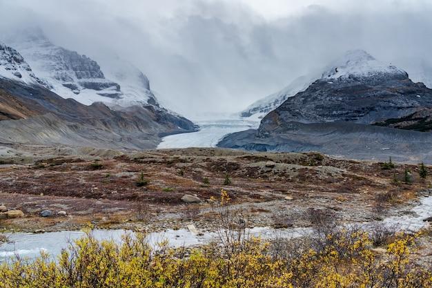 Ледник атабаска, ледяное поле колумбии, национальный парк джаспер, альберта, канада.