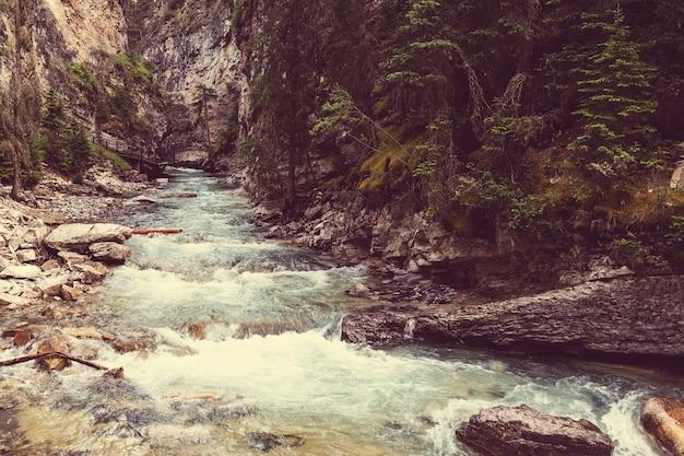 ジャスパー国立公園のアサバスカ川