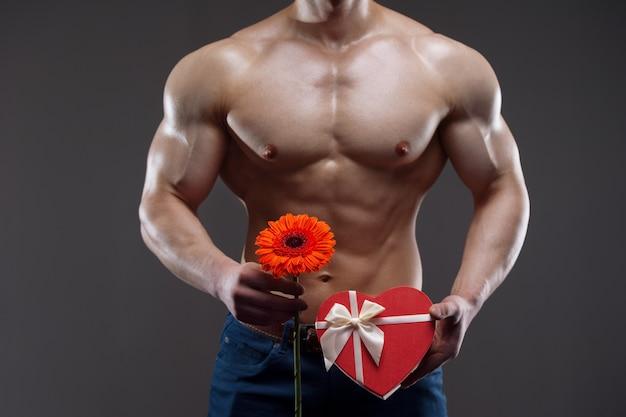 彼の手に赤いガーベラとギフトボックスを保持している運動の裸の男。バレンタインデーのコンセプト