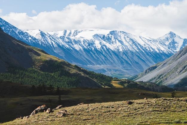 Атмосферный альпийский пейзаж с заснеженными горными хребтами и лесными холмами в солнечный день.