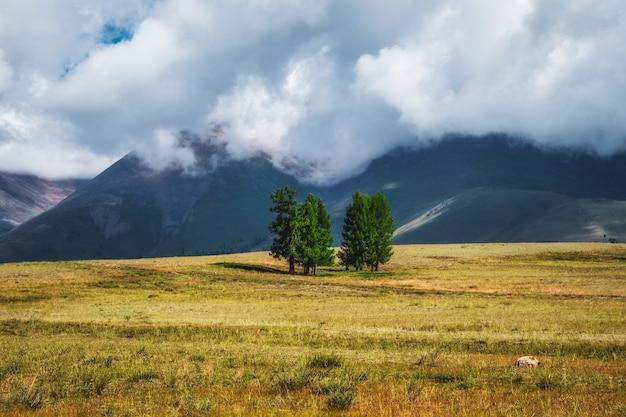 山に木がある大気の緑の風景