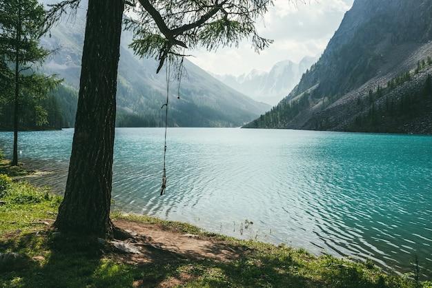 Атмосферный идиллический пейзаж с веревочными качелями на дереве возле альпийского озера