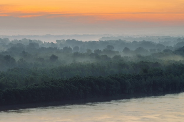 日の出の霧の森と大気の風景
