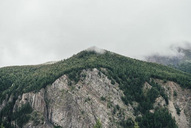 灰色の曇り空に森の頂点を持つ高い山の壁と大気の風景。低い雲の中に緑の山頂がある素晴らしい景色。緑の峰のある素晴らしい岩山の美しい景色。