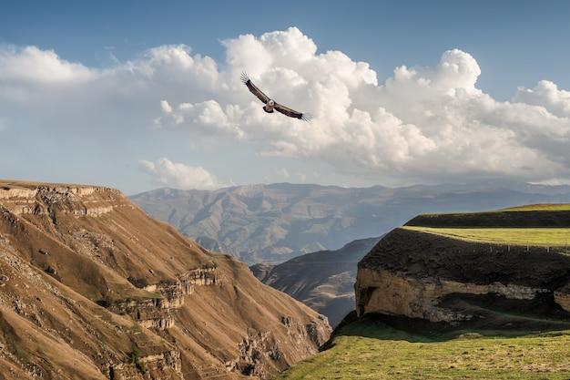 赤と緑の山々のシルエットのある雰囲気のある風景。ワシは山の峡谷の上を飛ぶ。フンザフ。ダゲスタン。