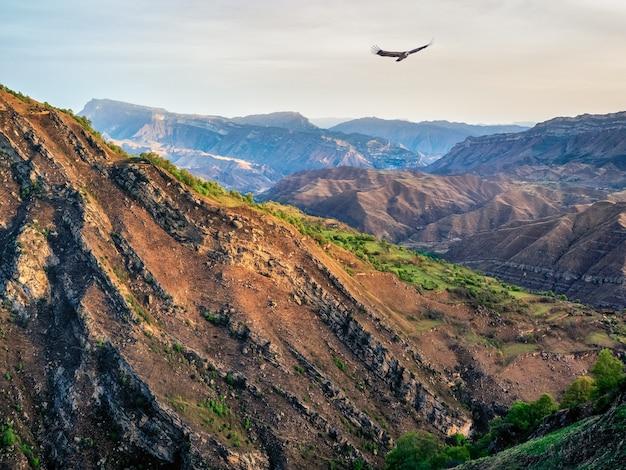 夕焼け空を背景に、織り目加工の山々のシルエットのある雰囲気のある風景。ワシが山の峡谷の上を飛んでいます。色あせた色の夕日。
