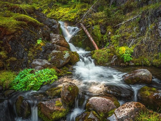 緑の岩に大きな滝が長時間露光された、雰囲気のある最小限の風景。湿った岩の上に乱流落下する水の流れの自然の背景。