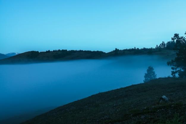 薄明かりの空の下で濃い霧の上の丘の上の木のシルエットと大気の山の風景。