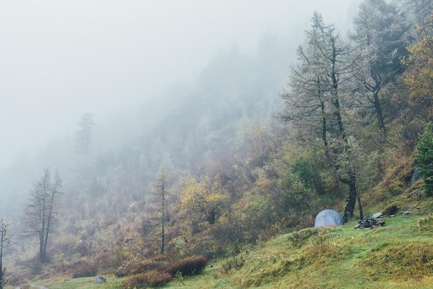 濃い霧の中、秋の色の草が茂った丘の上の木の下にテントがある雰囲気のある山の風景。濃い霧の中で黄色と赤の葉を持つ雑多な秋の植物の中にテントのある美しい高山の風景。