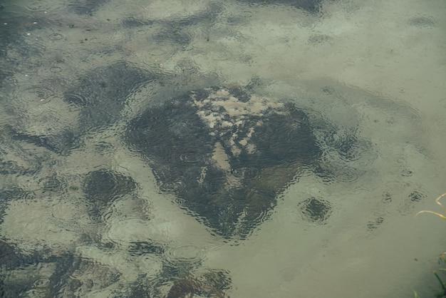 雨の輪と湖の澄んだ水の砂底に多くの黒い石と大気の自然の背景。透明な山の湖。雨の輪や石のある澄んだ水の最小限の背景。