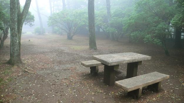 휴식을위한 분위기있는 장소, 안개가 자욱한 일본 공원의 나무 벤치, 산간 지역
