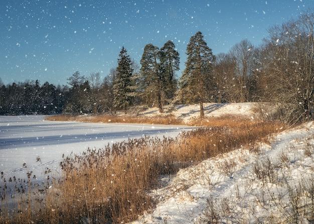 Атмосферный зимний пейзаж. яркий зимний солнечный пейзаж. морозный день на озере.