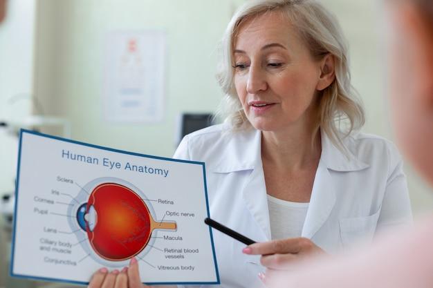 目の解剖学のスキームを指している注意深い短髪の医者