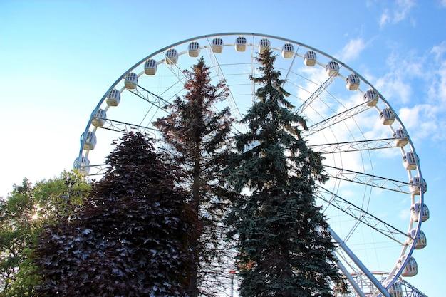 놀이 공원의 관람차와 나무의 매력