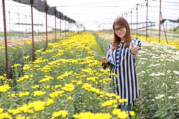 Attractive asian woman showing thumb up in chrysanthemum flowers farm