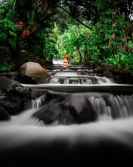 Привлекательная женщина в бикини сидит в красивой реке в окружении зелени