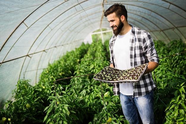 그의 온실에서 일하는 매력적인 행복한 남성 농부