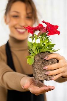 植える前に根を持つ花ペチュニアの芽を保持している魅力的な楽しい女性