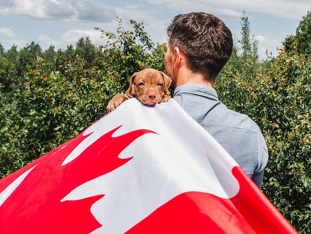 Attractive man holds a charming puppy on a background of blue sky on a clear, sunny day. outdoor, close-up. national holiday concept