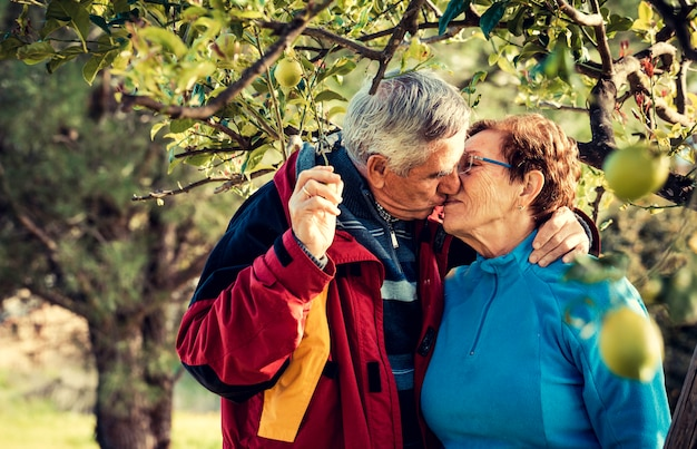 An attractive mature couple kissing outdoors under a lemon tree