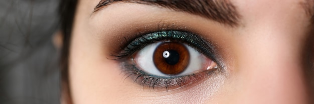 Attractive millennial female right dark brown eye with heavy makeup around close-up. perfect look concept