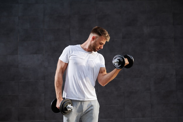 Attractive muscular caucasian blond bearded man in tracksuit and t-shirt lifting dumbbells while standing in front of gray wall.