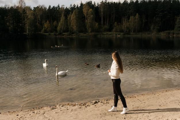 白鳥に餌をやる湖のほとりにいる魅力的な若い女の子、アウトドアレクリエーション